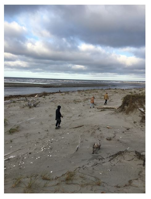 A group of people walking on a beach</p> <p>Description automatically generated