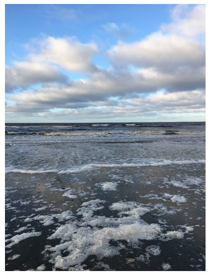 Water next to the ocean</p> <p>Description automatically generated